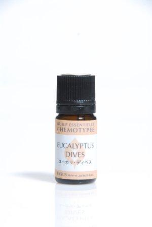 画像1: ユーカリ・ディベス Eucalyptus dives CT(Piperitone)